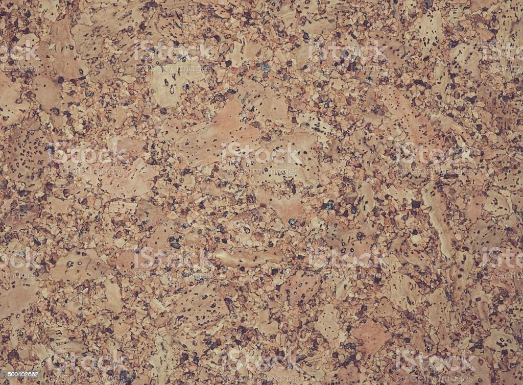 The structure of cork coverings stock photo