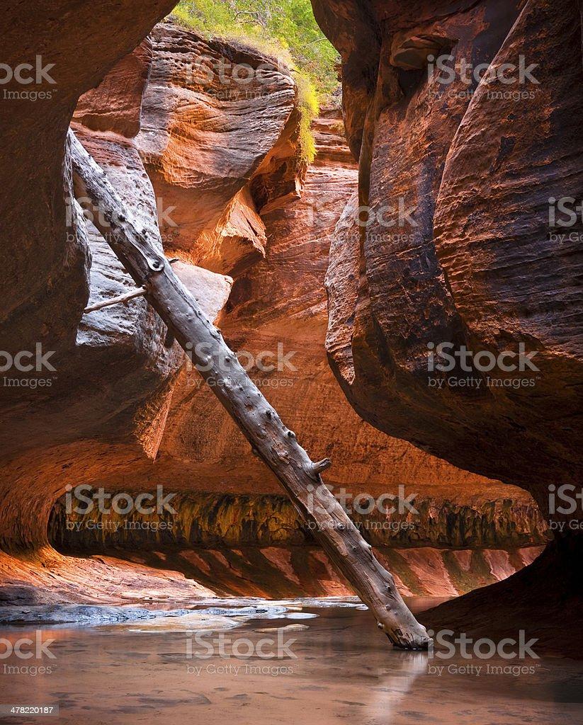 The Subway, North Creek, Zion National Park, Utah stock photo