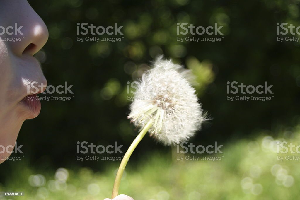 The summer has come! stock photo