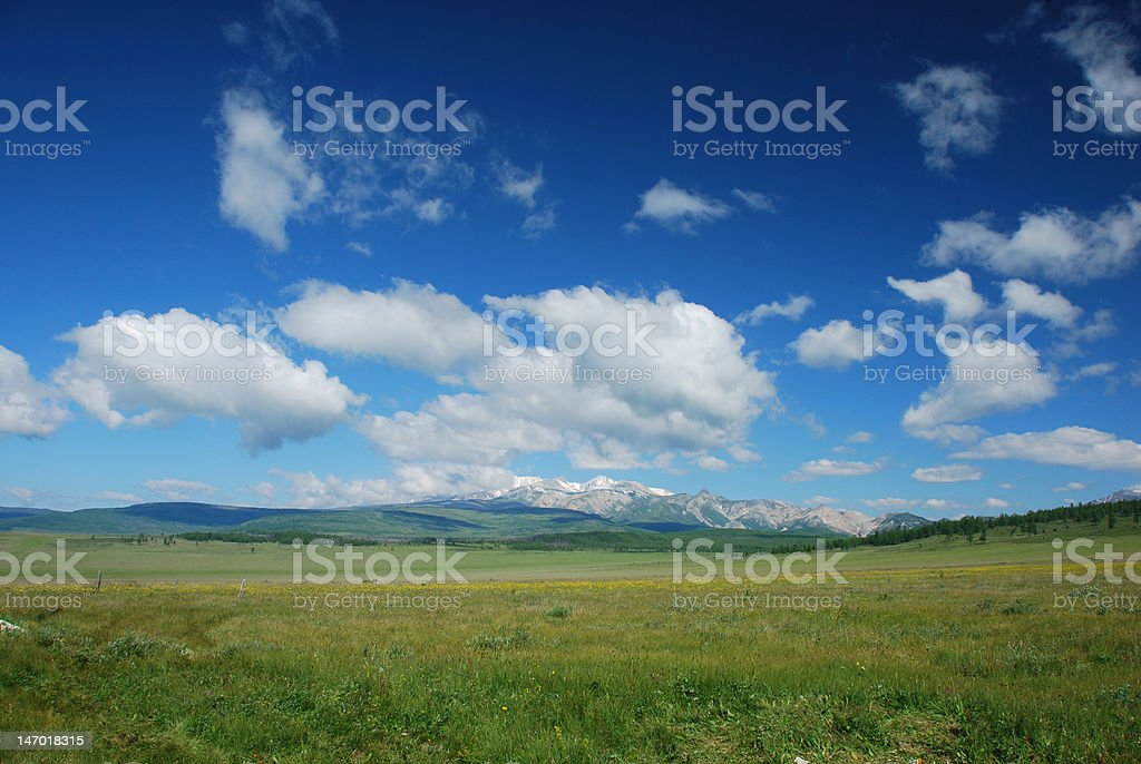 The summer landscape view royalty-free stock photo