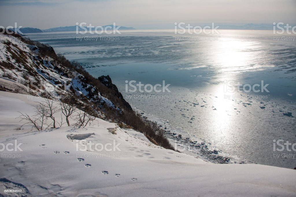 The sun is reflected in the Sea of Okhotsk stock photo