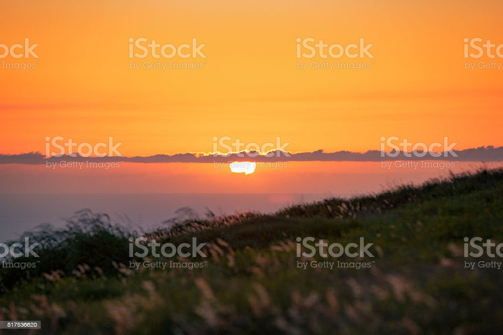 The Sunset Casting a Blazing Glow Across a Wild Meadow stock photo