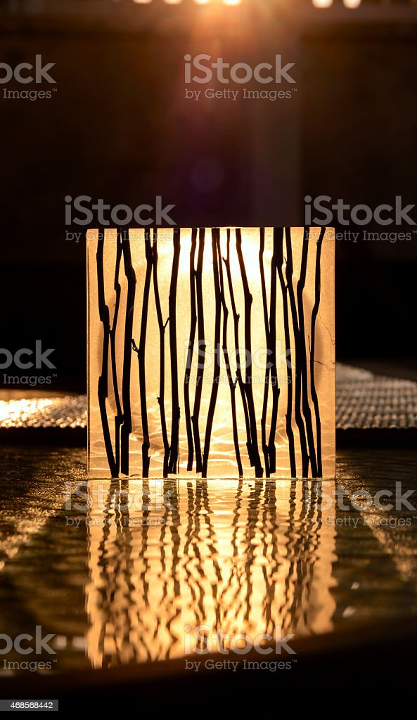 The sunset shade dry branch reflection royalty-free stock vector art