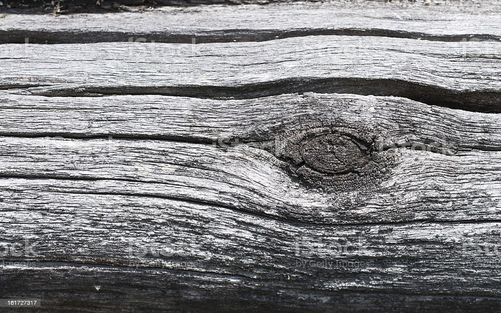 The surface of old weathered logs with a knot royalty-free stock photo