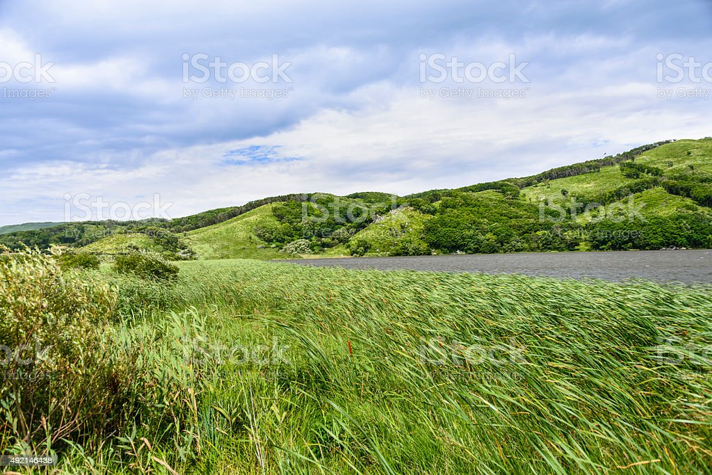 The surface of the lake. stock photo