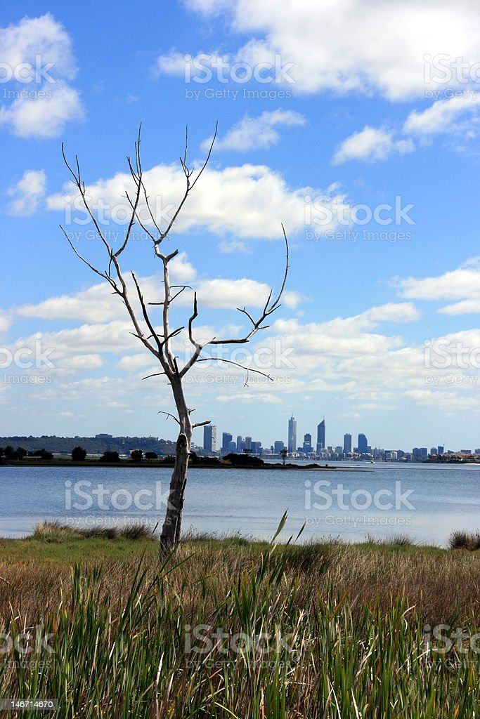 The Swan river in Perth WA royalty-free stock photo