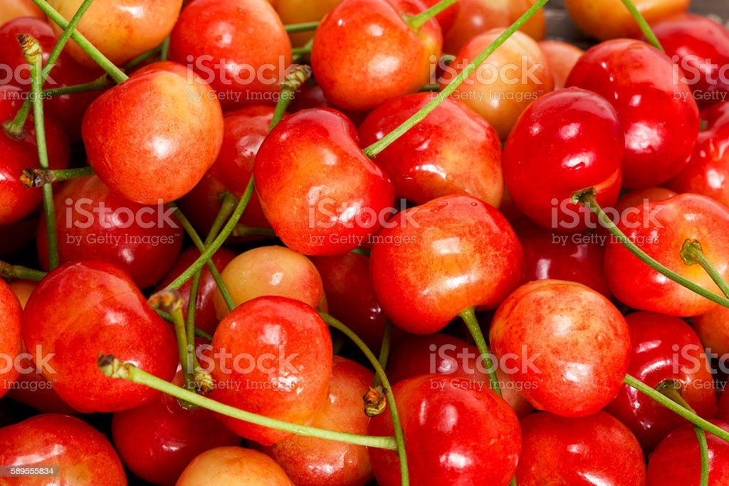 the sweet cherry stock photo