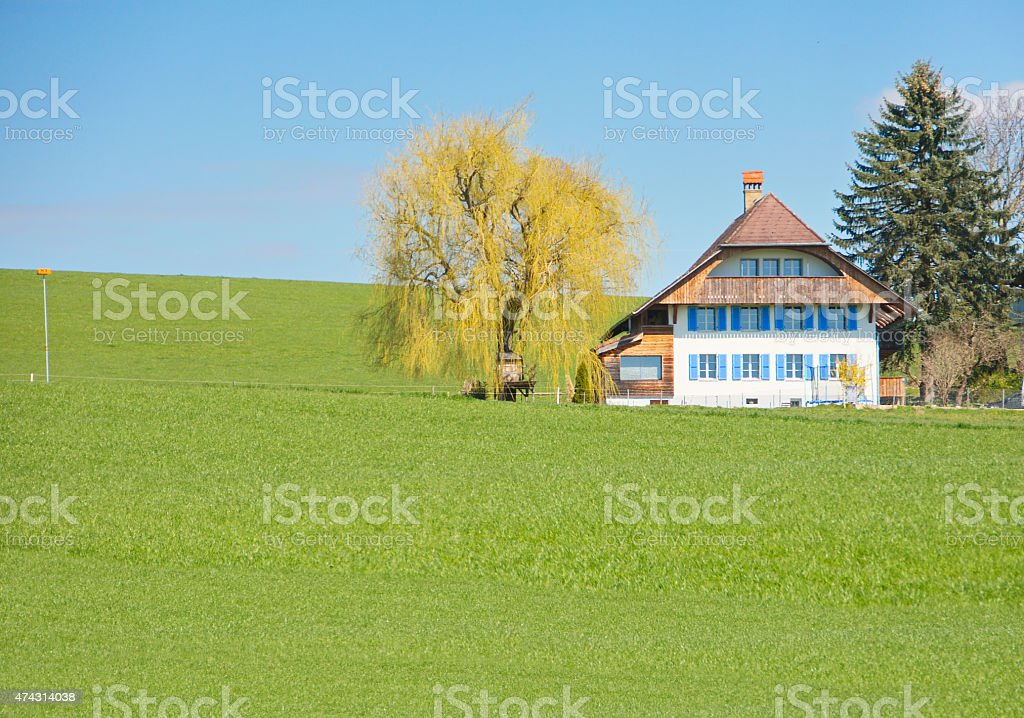 The Swiss Countryside stock photo
