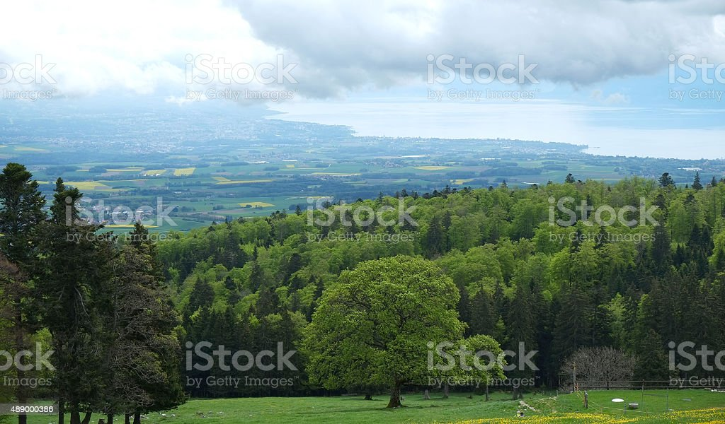 The Swiss Plateau (From the Jura mountain range) stock photo