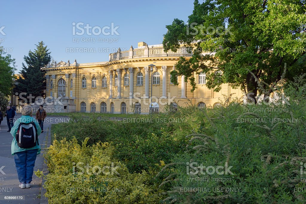 The Széchenyi thermal baths in Budapest stock photo