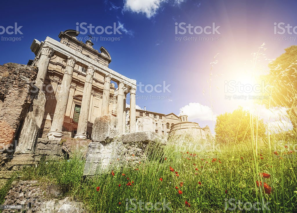 The Temple of Antoninus and Faustina in Roman forum stock photo