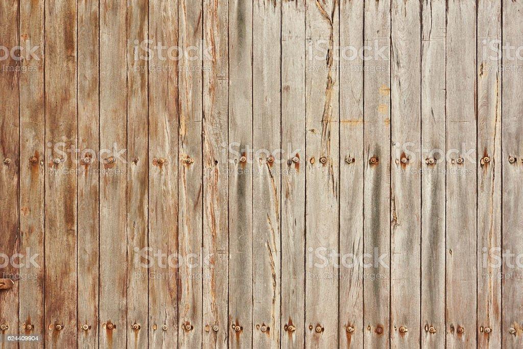 La texture di legno chiaro foto stock royalty-free