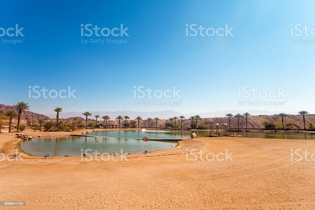 The Timna Lake - Oasis in Timna park, Israel stock photo