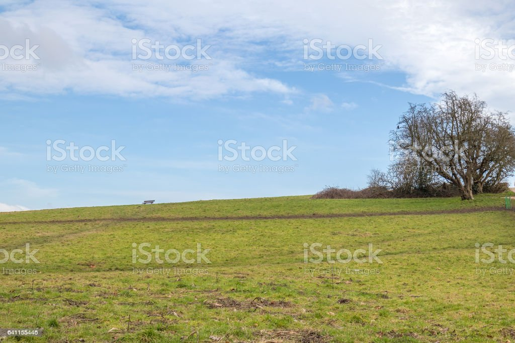 the top of a heath stock photo