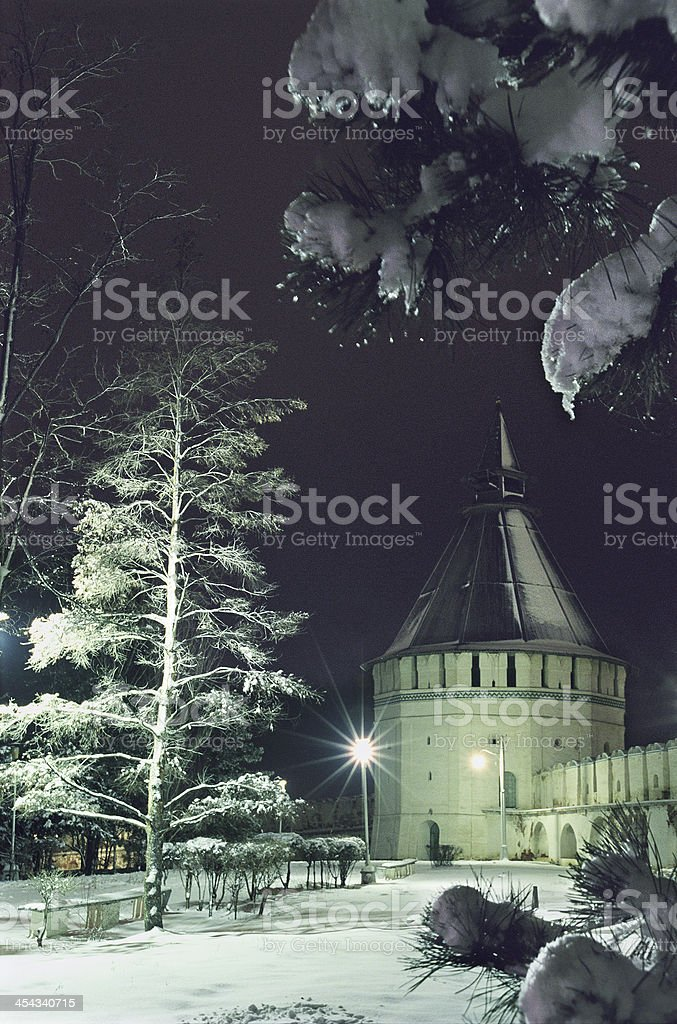 The tower . stock photo
