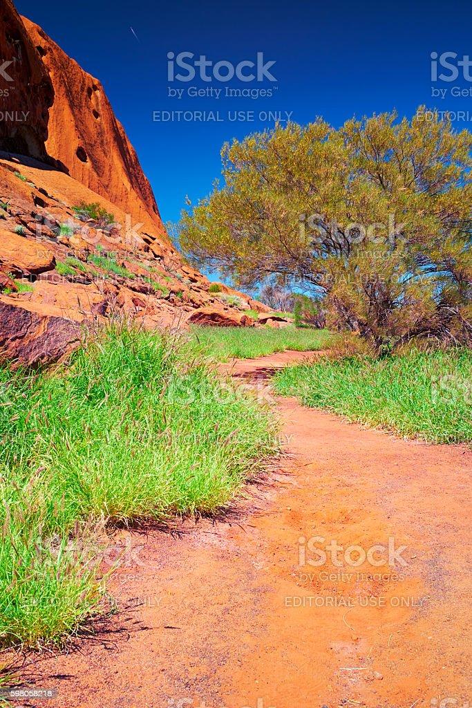 The Trail Around Uluru stock photo