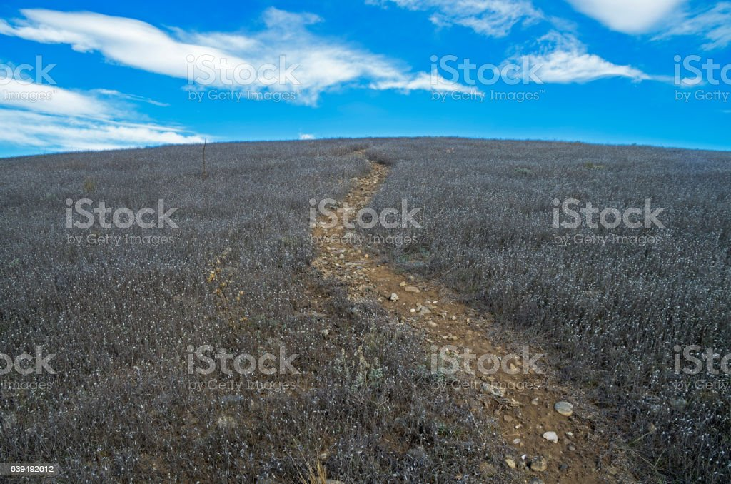 The trail to the top of the mountain. stock photo