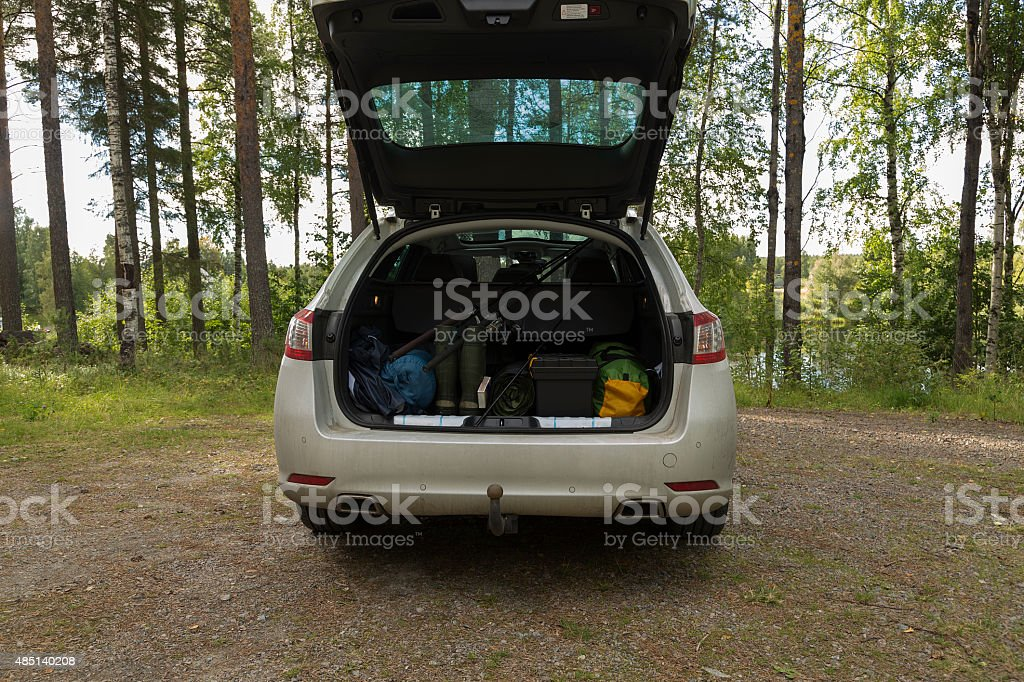 The trunk royalty-free stock photo