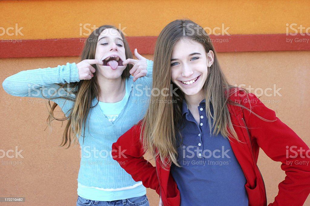 The twins royalty-free stock photo