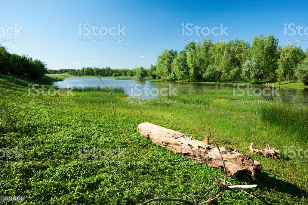The Ural River. Kazakhstan. West-Kazakhstan region. stock photo
