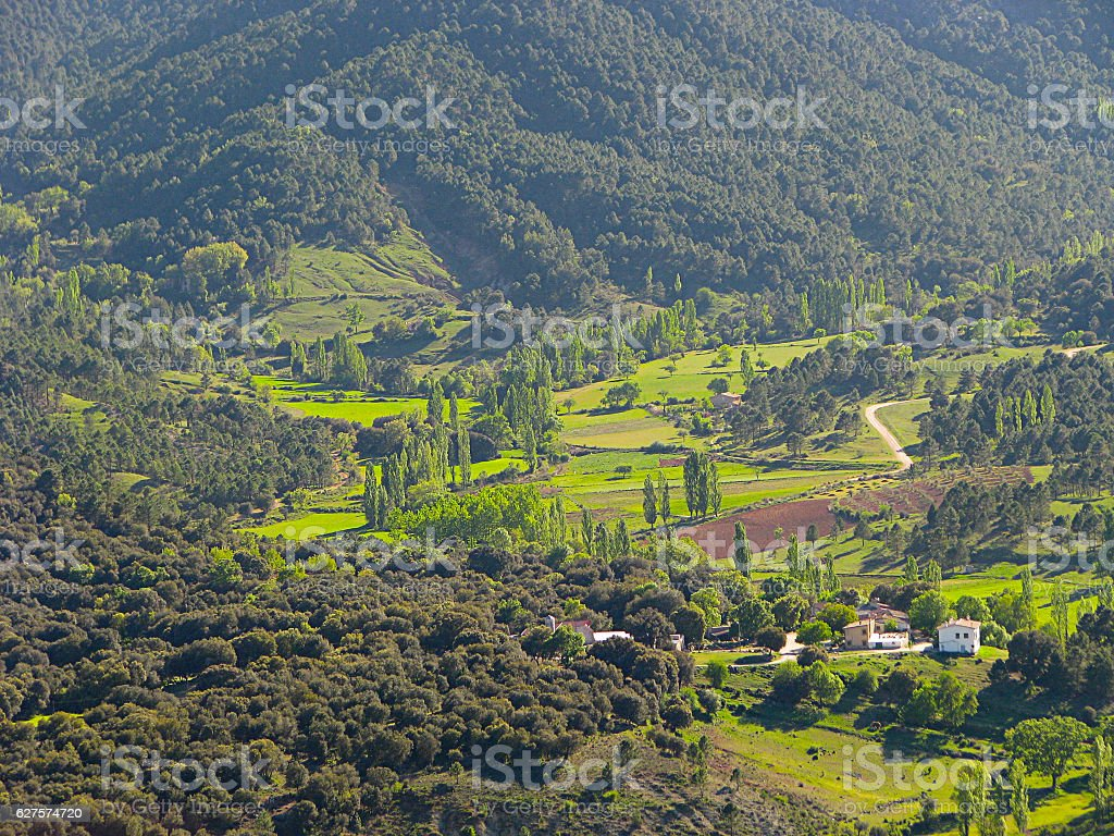 The valley: a close up stock photo