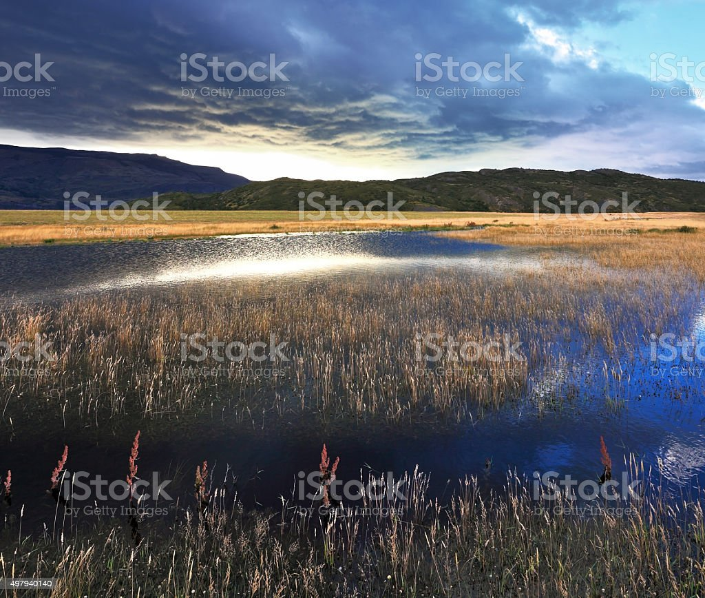The valley in the national park Torres del Paine stock photo