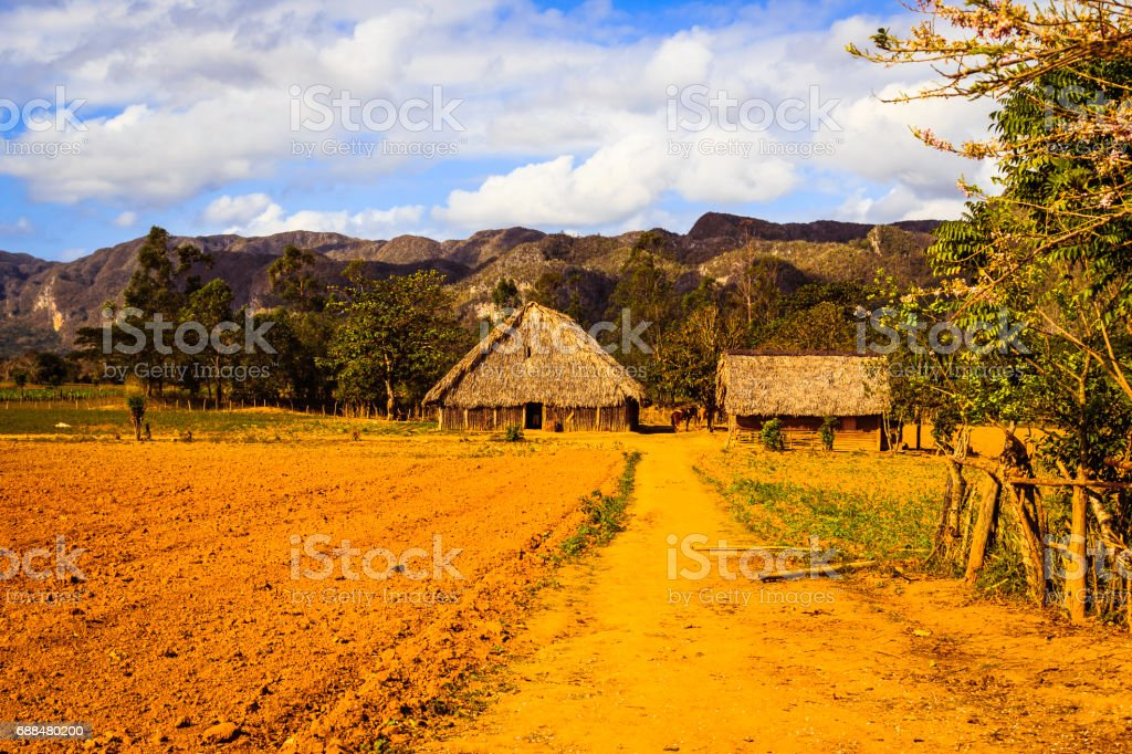The Valley of Viñales stock photo