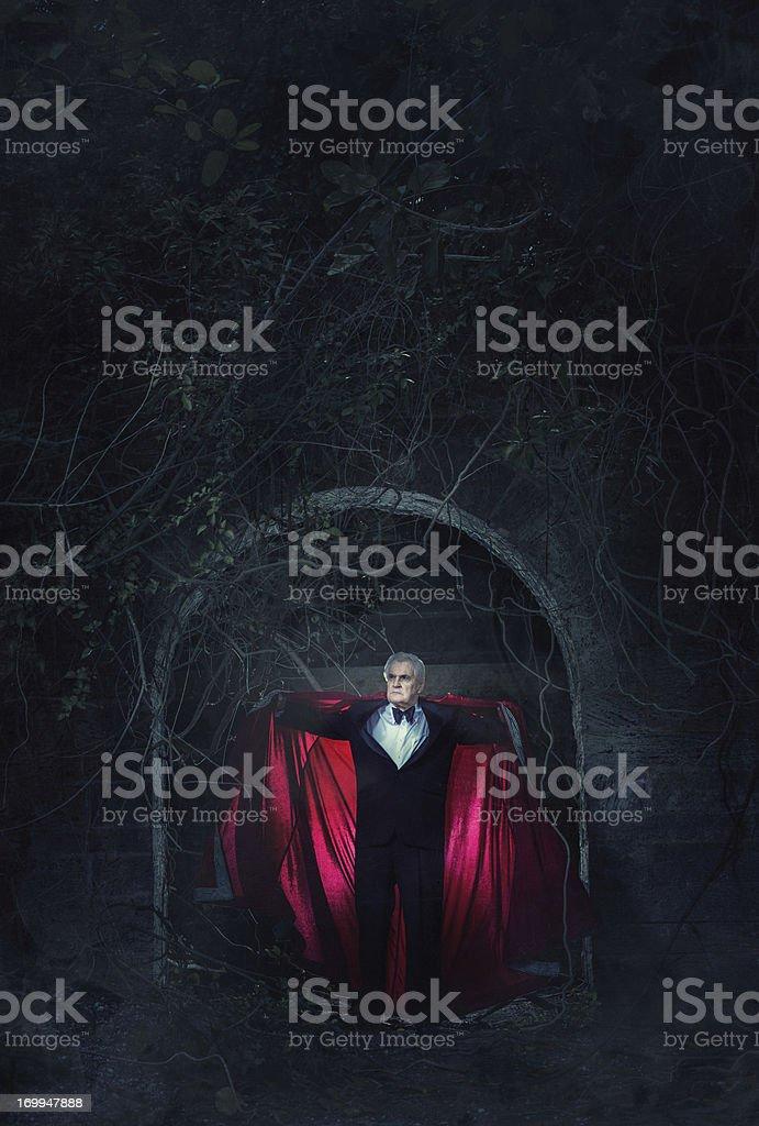 the vampire stock photo