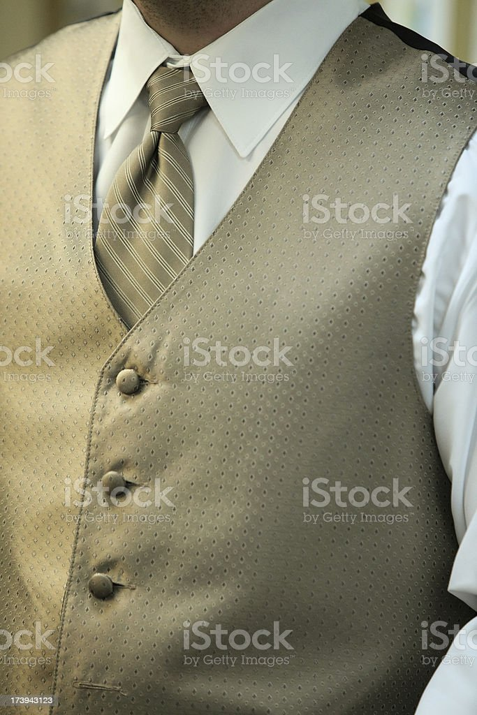 The vest royalty-free stock photo