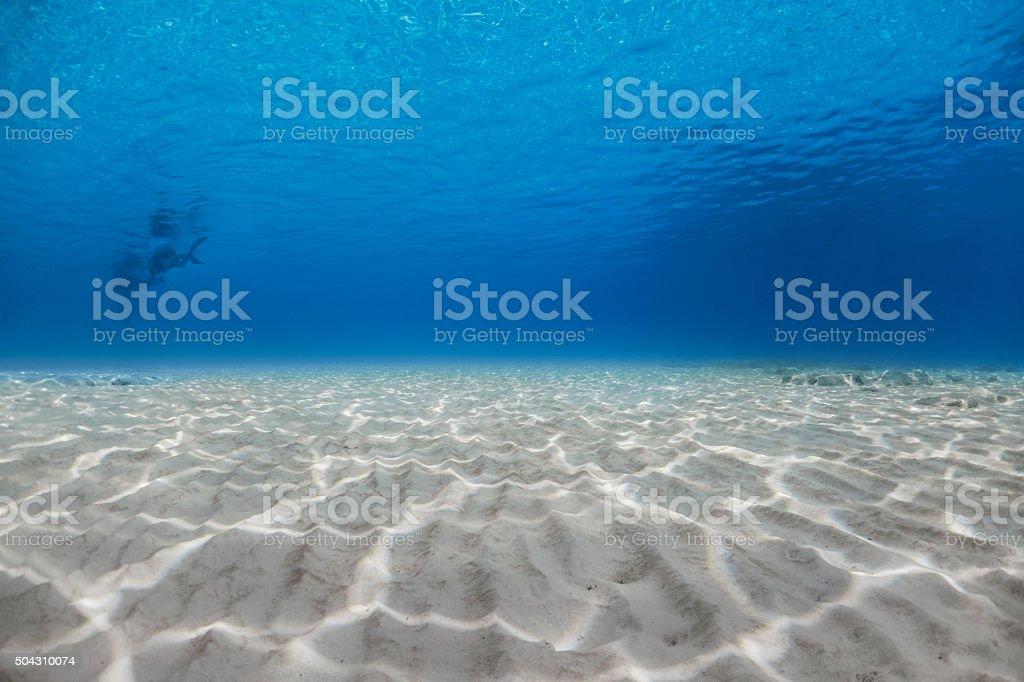 The view of seafloor at Racha Yai Island, Phuket, THAILAND. stock photo