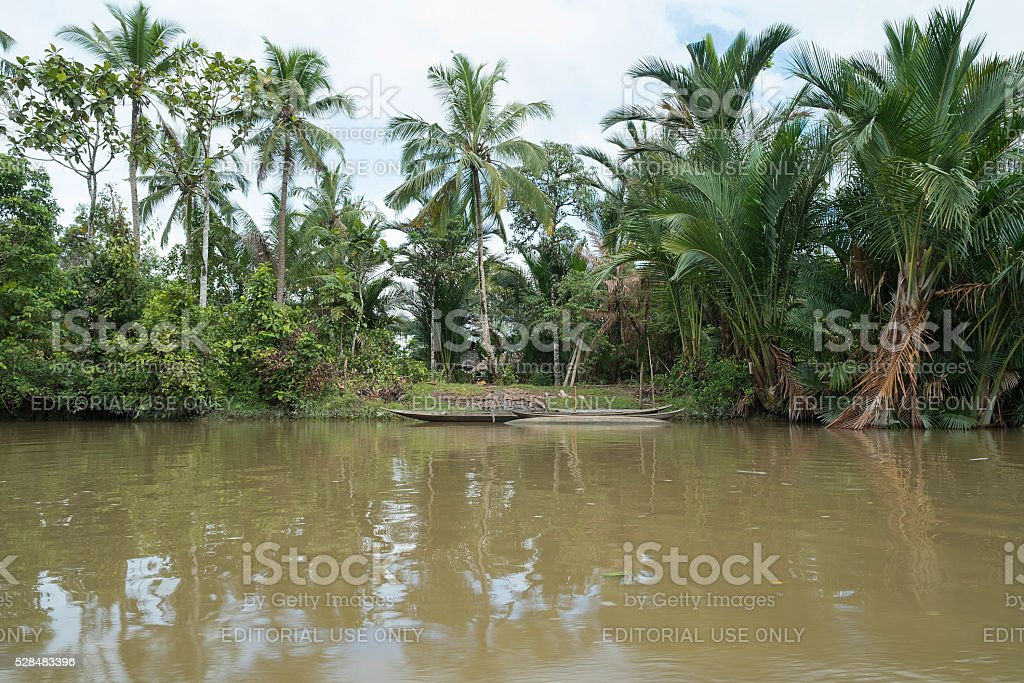 The village and the house of Mentawai tribe. stock photo