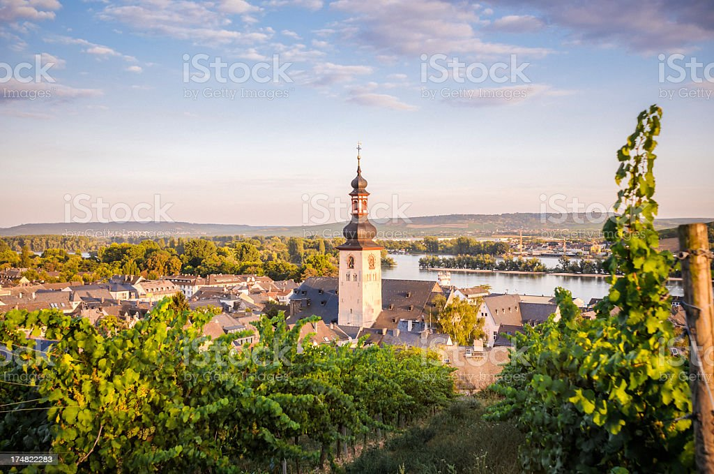 The village of Ruedesheim in Germany stock photo