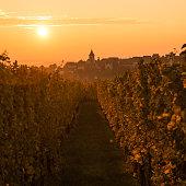 The Village of Zellenberg at sunrise,Alsace vineyard, France