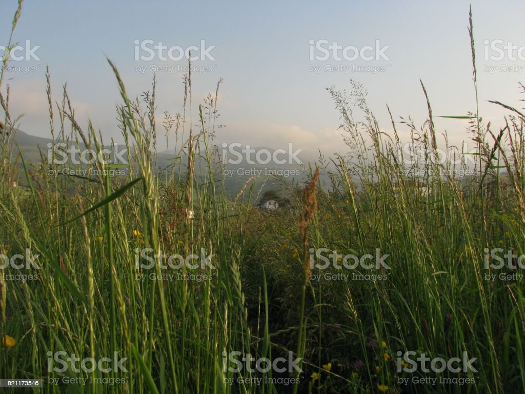 The village within too stock photo