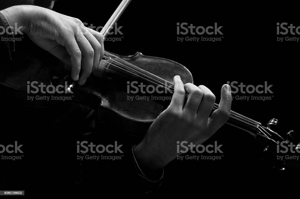 The violin in the hands of a musician closeup stock photo
