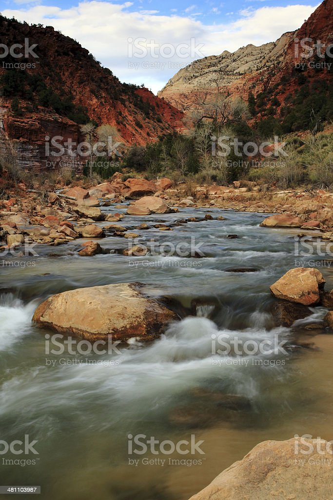 The Virgin River flowing through Zion Canyon royalty-free stock photo