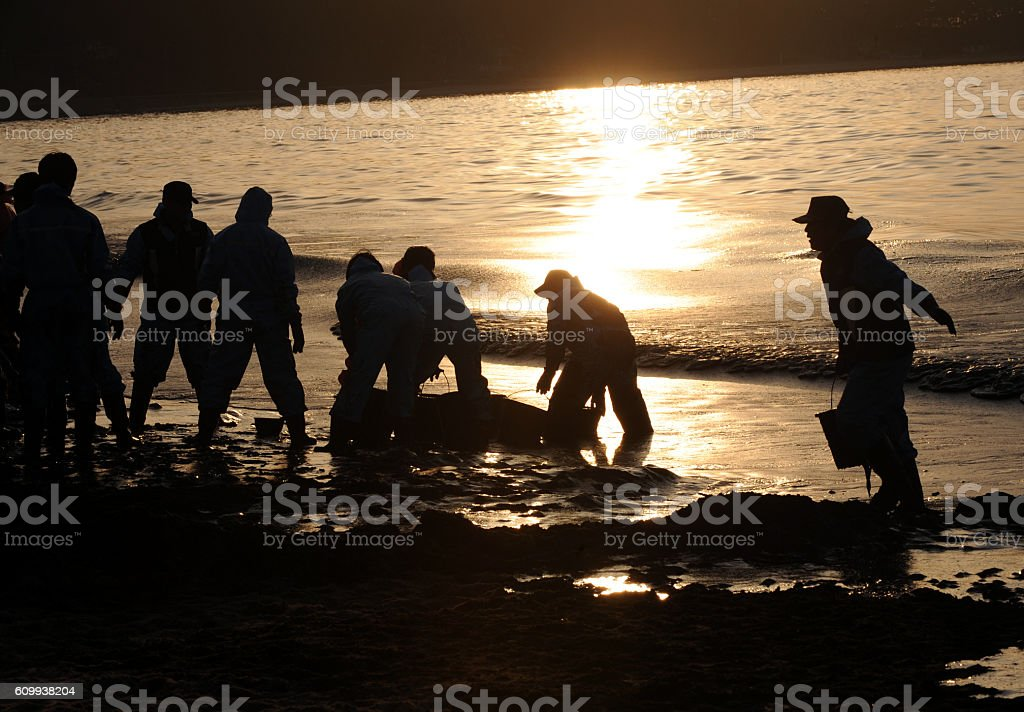 The volunteers to clean up oil stock photo