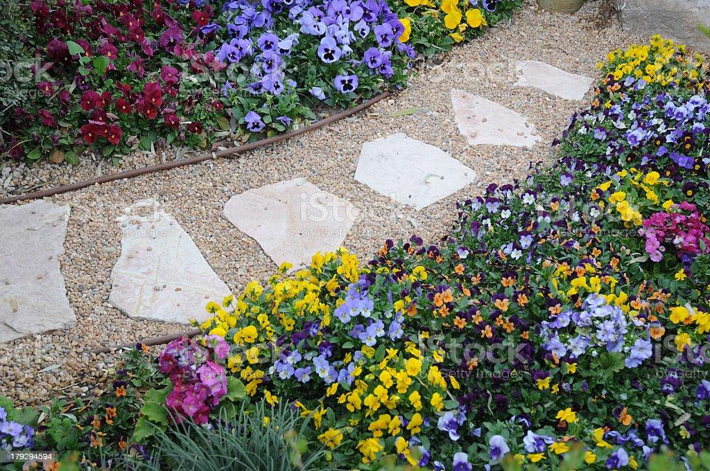 The walkway at a botanical garden stock photo