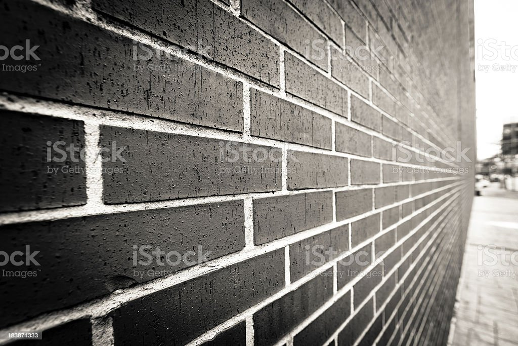 The Wall royalty-free stock photo