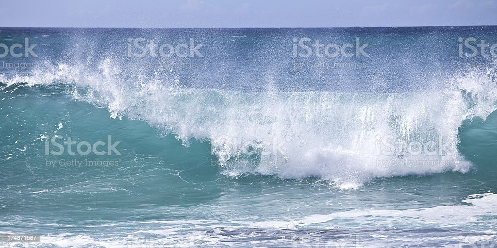 The Wave royalty-free stock photo