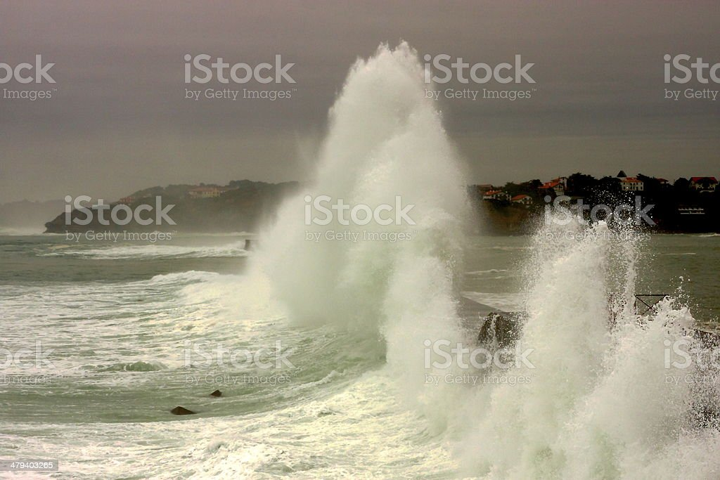The wave stock photo