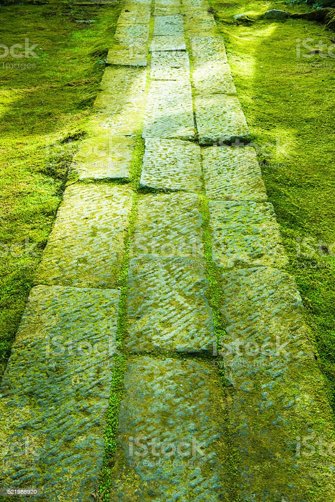 The way of a stone of moss stock photo