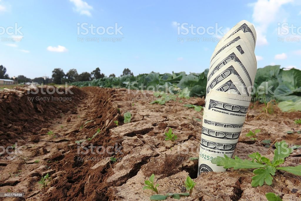 The Way to make money Concept stock photo