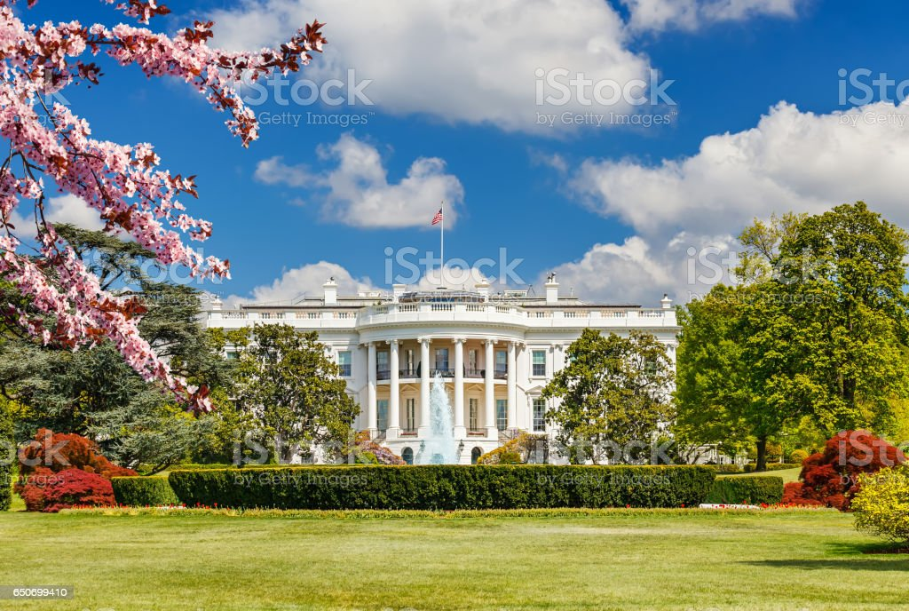 The White House at spring stock photo