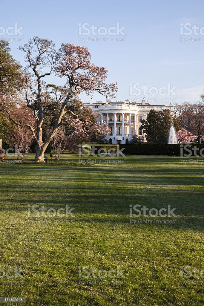 The White House at sunrise in Spring royalty-free stock photo