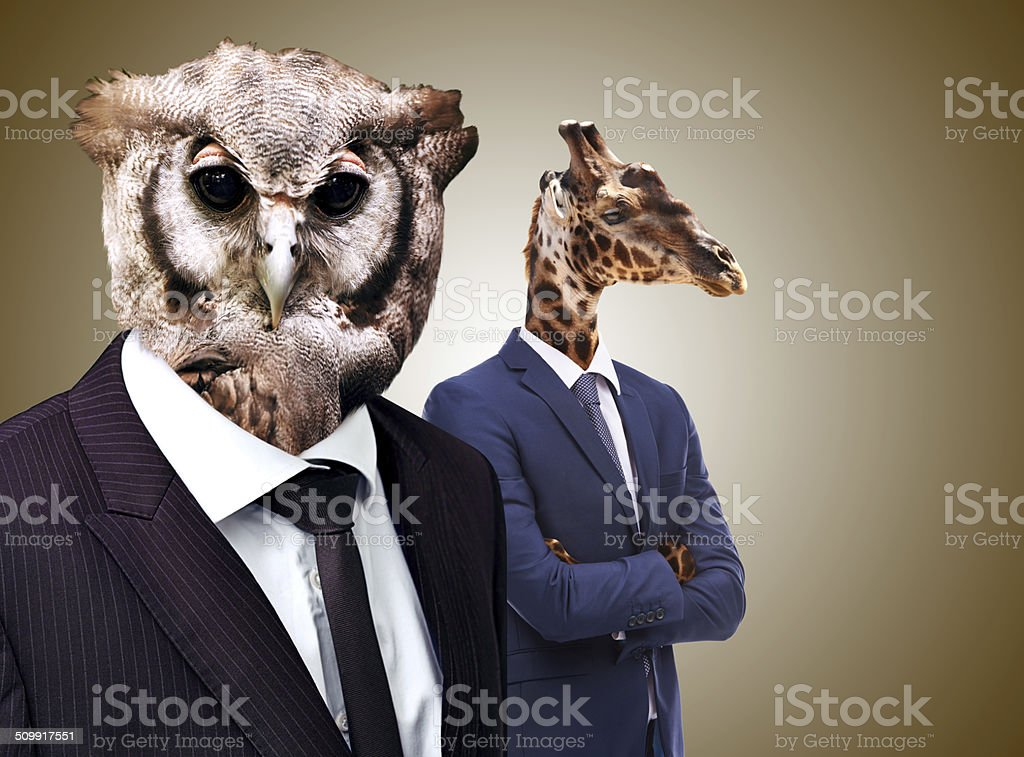 The whoo's whoo in business stock photo