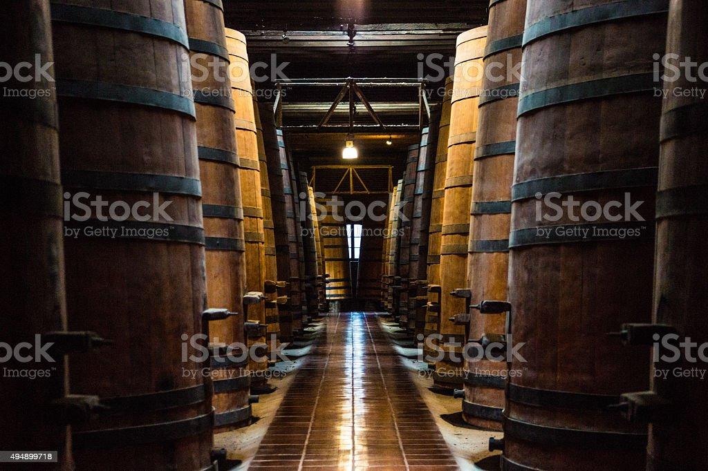 The Wine Cellar Path stock photo