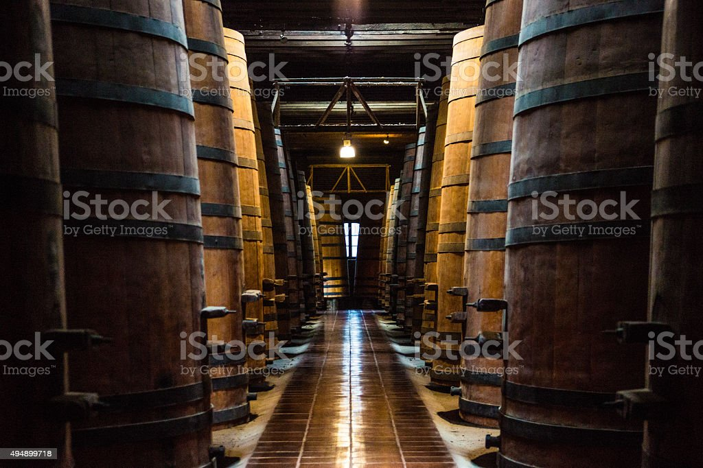 The Wine Cellar Path stock photo
