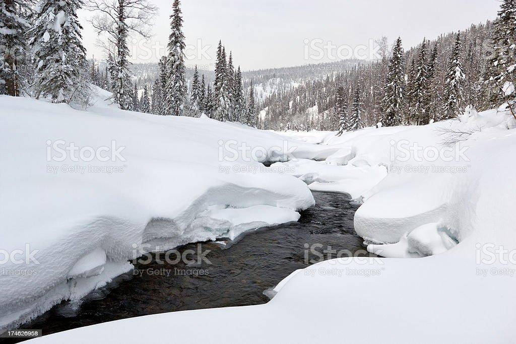 The winter creek. royalty-free stock photo