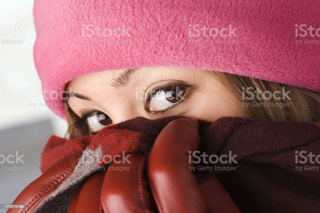 The Winter Look royalty-free stock photo
